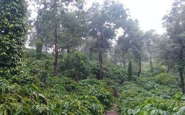 36000 m2 farm land for sale in District Dak Song