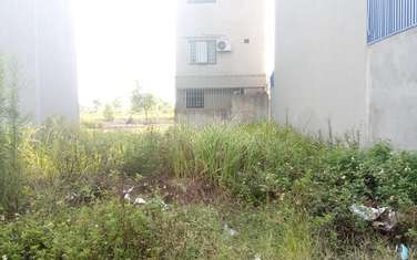 95 m2 residential land for sale in District Yen My