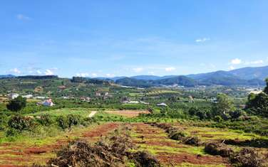 2347 m2 residential land for sale in District Lam Ha