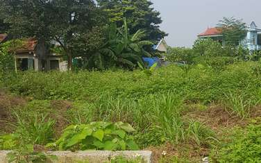 1260 m2 residential land for sale in District Luong Son