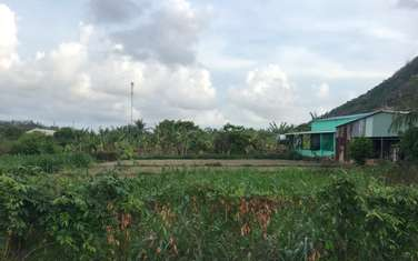 910 m2 residential land for sale in Phu My town