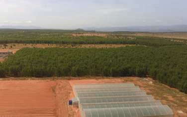 1600 m2 Agricultural Land for sale in District Bac Binh