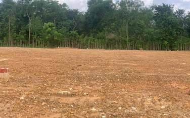 125 m2 residential land for sale in Phu My town
