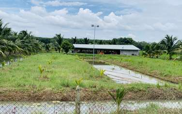 504 m2 residential land for sale in District Cu Chi