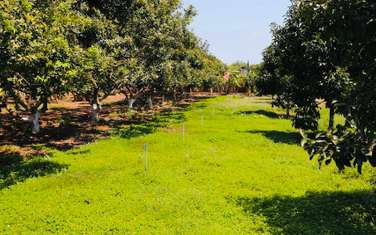 600 m2 Agricultural Land for sale in District Dat Do