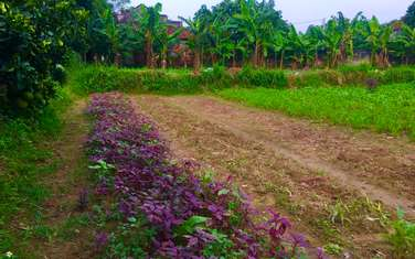 979 m2 residential land for sale in District Chuong My