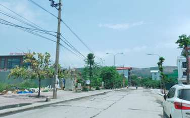 96 m2 Land for sale in Cam Pha