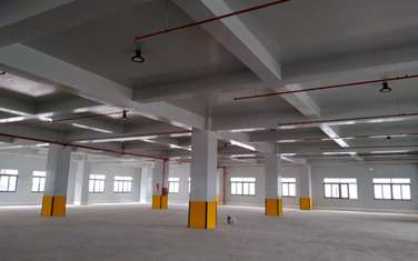 factory & warehouse for rent in District Can Giuoc
