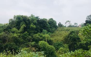 850 m2 residential land for sale in District Thach That