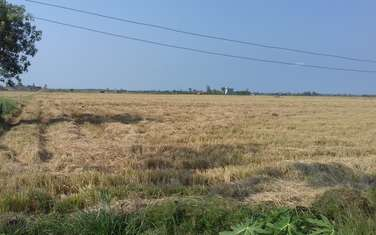 2234 m2 farm land for sale in District Go Cong Dong