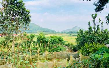 2700 m2 residential land for sale in District Thach That