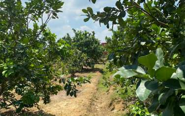2300 m2 Agricultural Land for sale in District Vinh Cuu