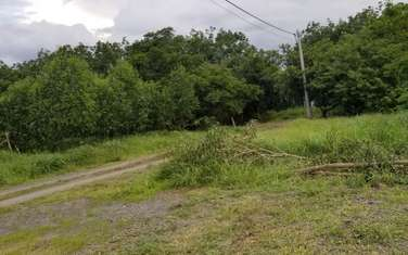 1000 m2 residential land for sale in District Trang Bom