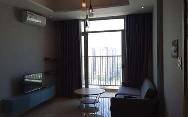2 bedroom apartment for sale in District 7