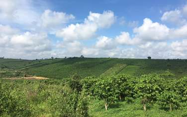 5300 m2 farm land for sale in District Bao Lam
