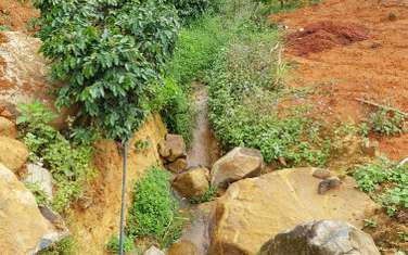 4500 m2 land for sale in Thanh pho Da Lat