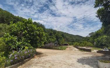 45000 m2 residential land for sale in District Ky Son