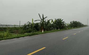 20000 m2 commercial land for sale in District Thai Thuy