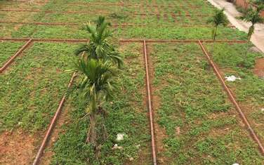 161 m2 residential land for sale in District Quoc Oai