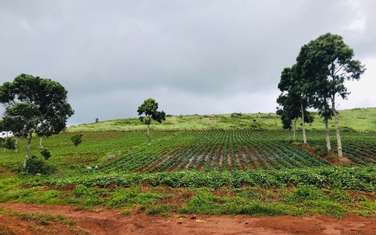 400000 m2 farm land for sale in District Dak Song
