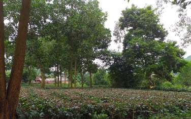 1080 m2 residential land for sale in District Ba Vi