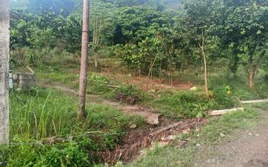 4000 m2 residential land for sale in District Luong Son
