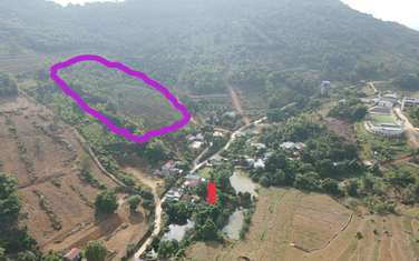 11000 m2 residential land for sale in District Quoc Oai