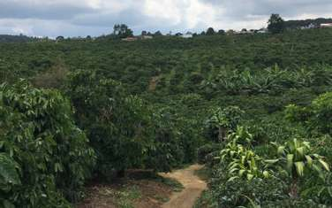 934 m2 residential land for sale in District Di Linh