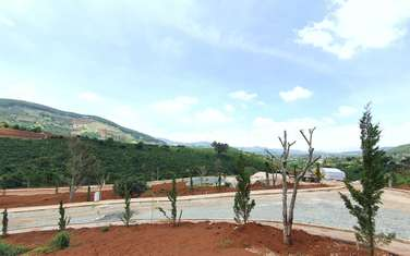 430 m2 residential land for sale in District Lam Ha