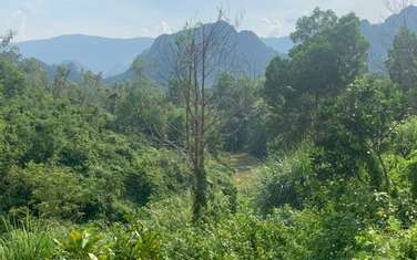 38000 m2 residential land for sale in District Luong Son