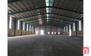 factory & warehouse for rent in Phu Ly