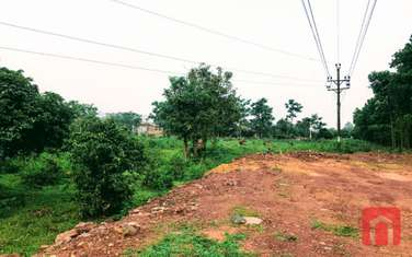 5000 m2 land for sale in District Pho Yen