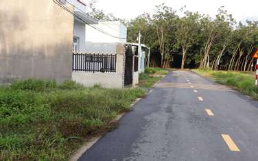 65 m2 residential land for sale in District Binh Chanh